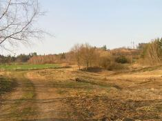 Dolní rybník - 26.3.2011