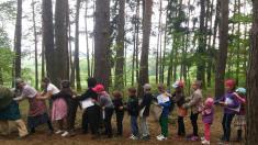 Návštěva pohádkového lesa