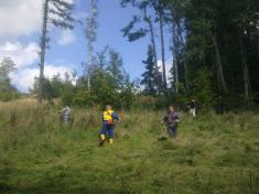 Hasiči pracovali v lese